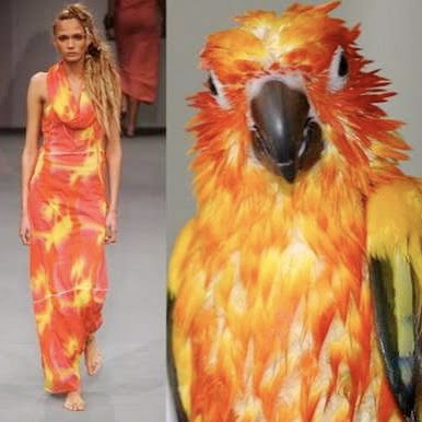 nature-inspired-fashion_bird-12