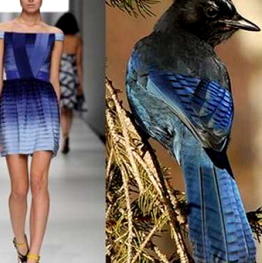 nature-inspired-fashion_bird-15