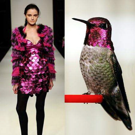 nature-inspired-fashion_bird-5