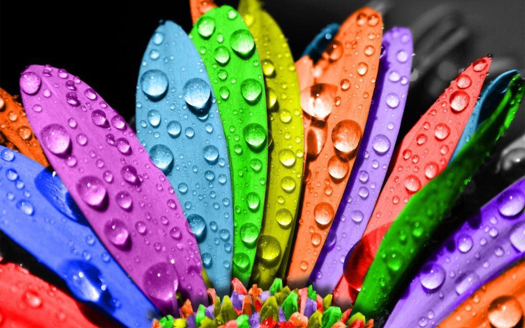 wallpaper-rainbow