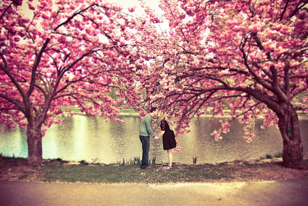 creative-engagement-shoot-cherry-blossoms-korrileighcrowley2